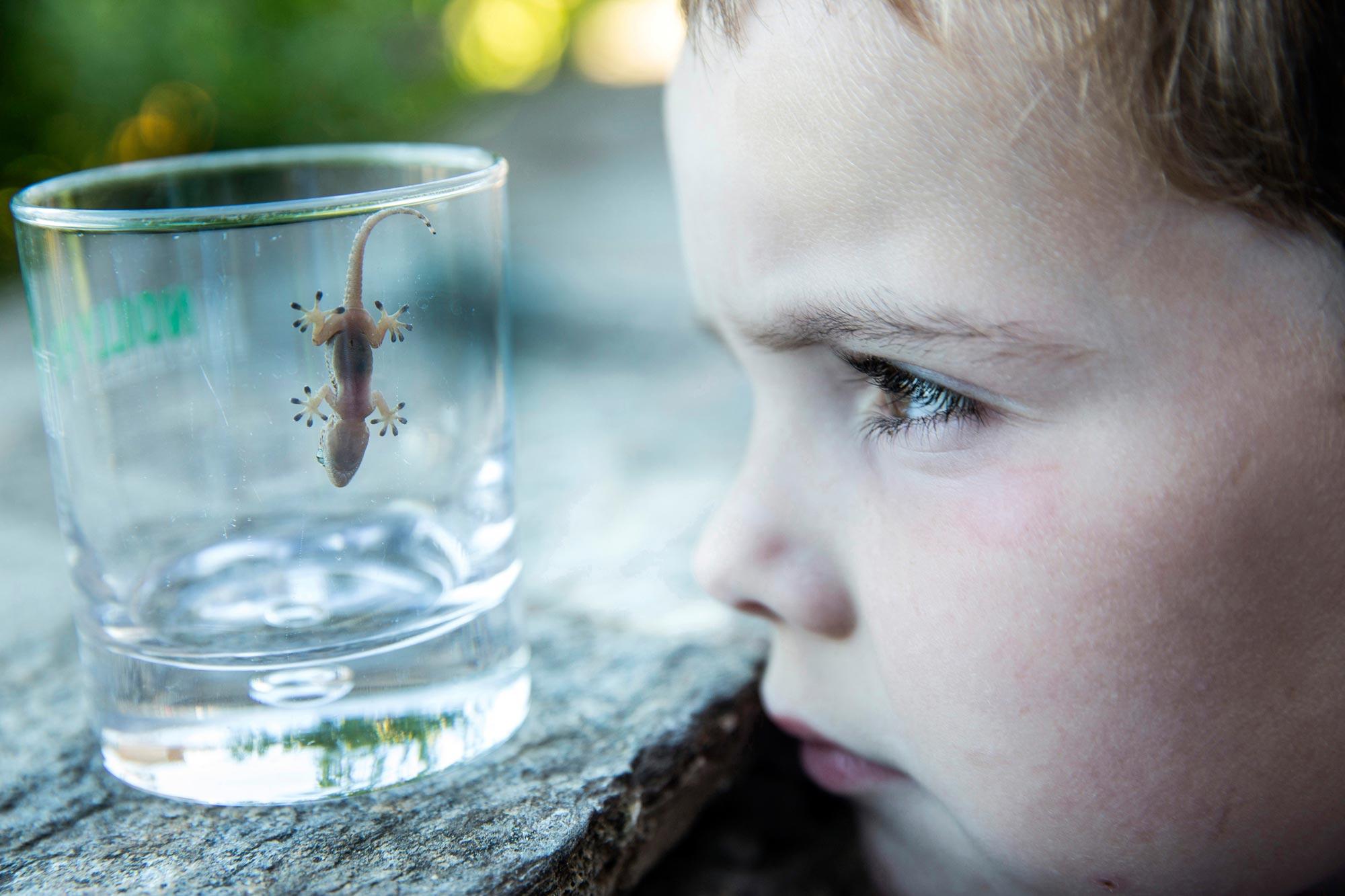 Das Gewinnerfoto in der Kategorie Einzelbild zum Thema »Der zündende Moment – das Interesse an Wissenschaft erwacht«. Foto: Paul Hahn