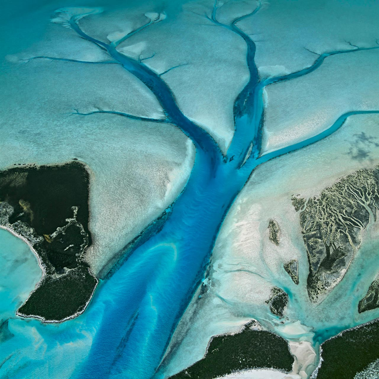 Der Tidenhub auf den Bahamas liegt bei etwa einem Meter. Bei Ebbe sammelt sich das Meerwasser in Prielen, tiefen Rinnen im weißen Kalkschlamm, die wie Adern den flachen Meeresboden durchziehen. Priel, Long Island, Bahamas. Foto: Bernhard Edmaier
