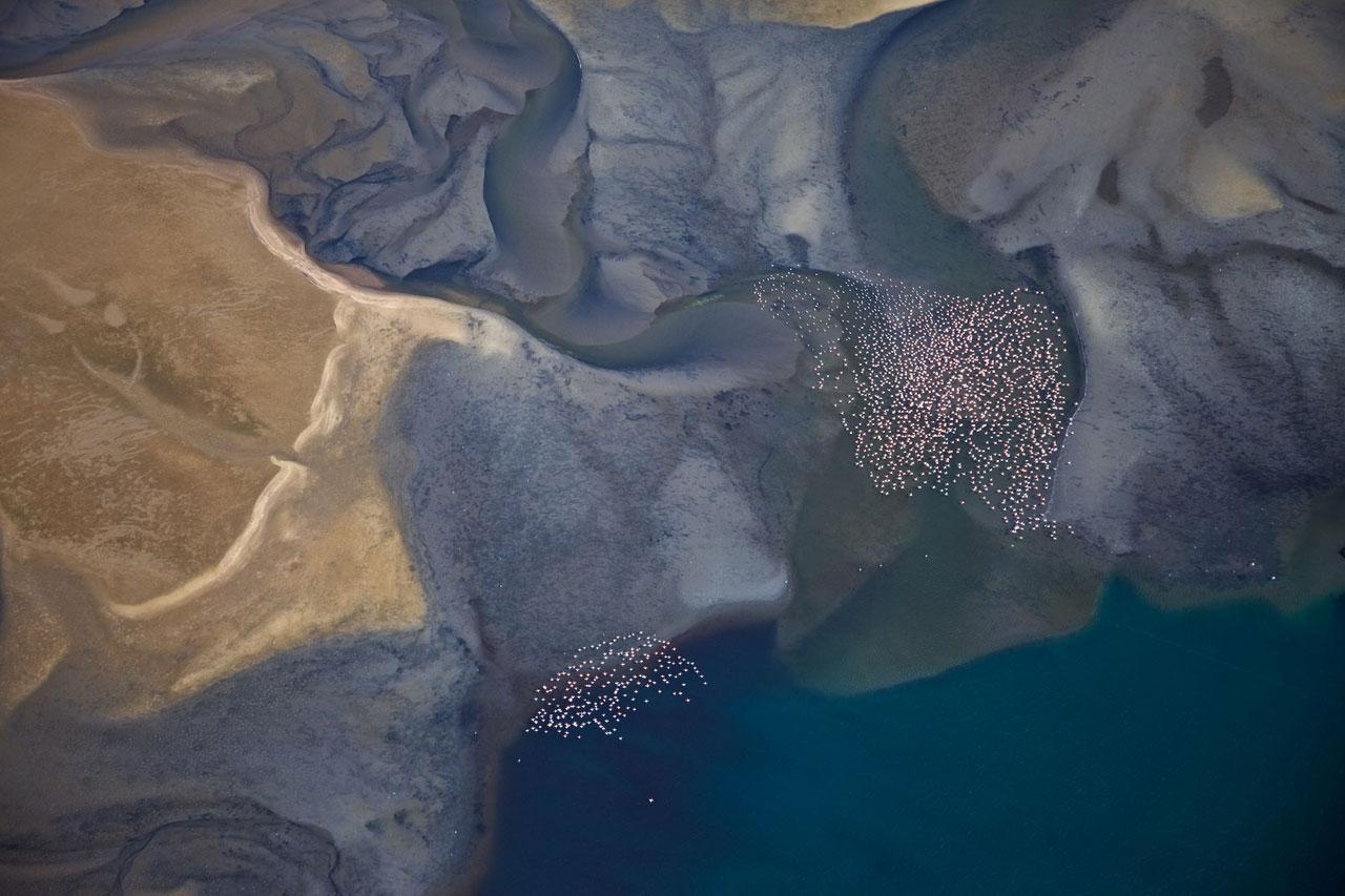 Fliegende Flamingos über der Lagune von Sandwich Harbour, Namibia. Foto: Jörg Reuther
